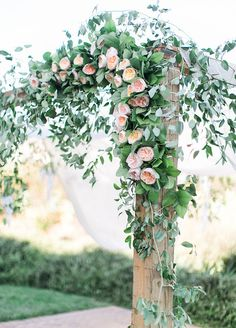 The ceremony arch is dripping in greenery and lush peach garden roses.