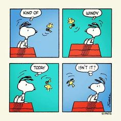 Snoopy and Woodstock being blown about!