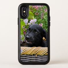 Cute Black Labrador Retriever Dog Puppy Pet Photo OtterBox Symmetry iPhone X Case - dog puppy dogs doggy pup hound love pet best friend
