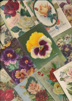 Nice-LOT-of-25-Victorian-PANSYS-ROSES-Flowers-greetings-Postcards-sss51