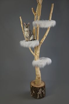 Catlounge cat tree with white faux fur