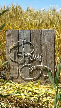 We'll work with you to create a unique piece of barbed wire art. Browse our online portfolio of barbed wire art offered or contact us about a custom order. Western Crafts, Rustic Crafts, Wooden Crafts, Metal Crafts, Barb Wire Crafts, Wire Hanger Crafts, Wire Hangers, Horseshoe Crafts, Horseshoe Art