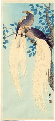 """""""Two Birds of Paradise on a Tree Branch"""" by Shoson Shoson 1877 - 1945"""