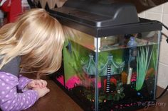 8 Reasons Having a Pet FISH is Awesome! #ad @PetSmart #pets #family