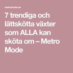 7 trendiga och lättskötta växter som ALLA kan sköta om – Metro Mode