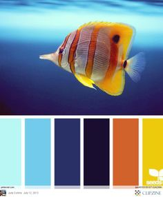 Colors We Love - NorthSouth Branding Company