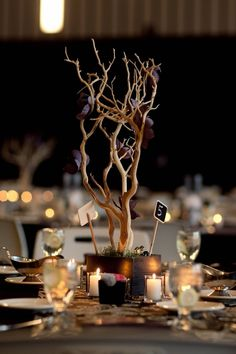 DIY elegant centerpieces. Just mix up some concrete. Then use a glue gun to add branches and your favorite flowers to your wedding table settings. #wedding