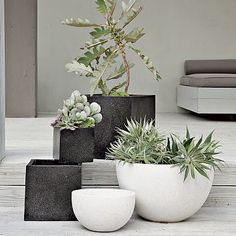 The perfect planter. The Iris Speckled Planter is made to mimic terrazzo floors. Surprisingly lightweight, it's easy to fill with leafy greens for a lively display on a patio, porch or in an entryway.