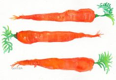 3 Carrots Painting watercolor  Vegetables by SharonFosterArt, $15.00