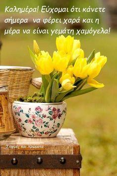 Beautiful Rose Flowers, Beautiful Flower Arrangements, Yellow Flowers, Beautiful Flowers, Good Morning Flowers Pictures, Good Morning Beautiful Images, Flower Pictures, Good Morning Wallpaper, Good Morning Good Night