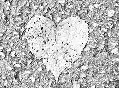🍂 Fall🍂 ..in love!  #fall