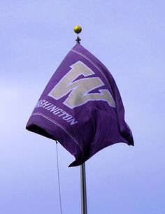 Flying the purple and gold. #youW Photo by Kellie Hand