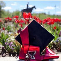 Texas Tech graduation