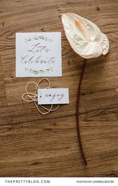 Thanksgiving Inspiration | Lunch Celebration Stationery Set: Free Printables by Susan Brand | Photograph by Darren Bester