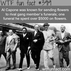 Al Capone facts - WTF fun facts