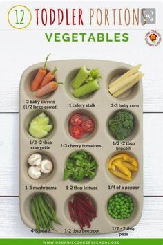 Toddler Portion Sizes – Ideas and Strategies to Ensure Your Toddler's Diet is Balanced and Varied. Toddler Portion Sizes – Ideas and Strategies to Ensure Your Toddler's Diet is Balanced and Varied. — The Organic Cookery School (Vegetables) Healthy Toddler Meals, Toddler Lunches, Healthy Kids, Kids Meals, Toddler Food, Toddler Dinners, Toddler Nutrition, Healthy Lunches, Toddler Learning