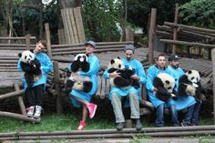 Members of the Backstreet Boys hold giant pandas at the Giant Panda Breeding Research Institute during their China Tour on May 30, 2013 in Chengdu, Sichuan Province of China. (Photo by ChinaFotoPress/ChinaFotoPress via Getty Images)