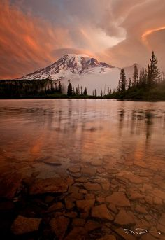 Pure -    Tile like textures line the floor of this calm lake during an early morning light show at Mt Rainer.
