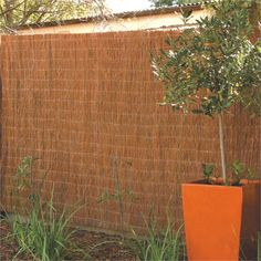 Garden Trend 3 x 1.8m Natural Brushwood Fence Screening