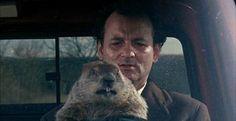 """""""HFT Groundhog Day"""""""