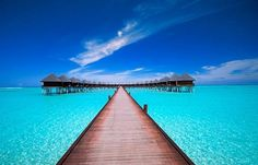 Maldives - I am going here someday.