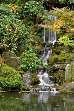 Japanese Garden | par pantone354