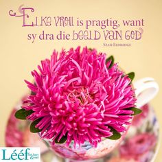 Morning Motivation Quotes, Living Water, Afrikaans, Hart, Positivity, Words, Mood Boards, Lisa, Bible