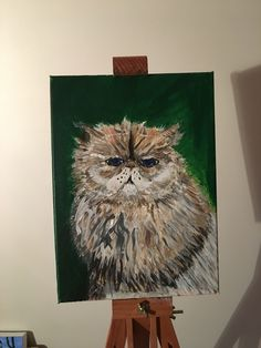 Owl, Bird, Animals, Animales, Animaux, Birds, Owls, Animal Memes, Animal