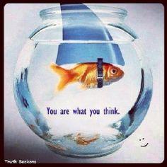 #mindset