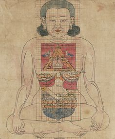 Buddhist Cosmological Scroll (Detail), Localization of Viscera in the Torso, Interconnecting Blood Vessels and Channels, Tree of the Body in Health and Illness, Tree of Treatment, Tree of Diagnosis,...
