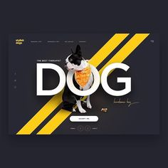 "51dbadad1b8 Web Design & Inspiration on Instagram: ""Dog Adoption Website 😍👌🏻 