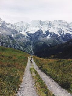 hike the beautiful trails of gimmelwald in the swiss alps, one of the most amazing things I've done