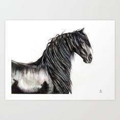 Collect your choice of gallery quality Giclée, or fine art prints custom trimmed by hand in a variety of sizes with a white border for framing.  Drawing of a Friesian stallion, my brief venture in equine art