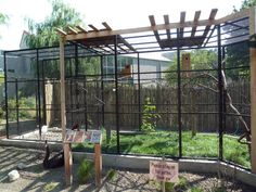 Australia Adventure - Bird Aviary