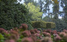 Fototeca orticolario - Orticolario - Per un giardinaggio evoluto - Villa Erba, Como - Orticolario