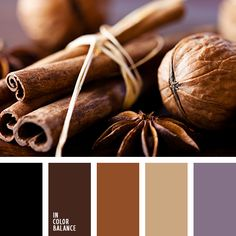 "beige, black, brown and purple, chocolate brown, cinnamon color, color ""nud"", color matching for design, color of lavender, dark brown, lavender, nut shell color, reddish brown, shades of brown, Violet Color Palettes, warm brown."