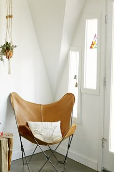 hanging plants & palm chair