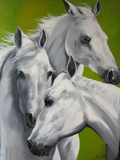 https://flic.kr/p/3ptwAd | cavalos 028 | cavalos brancos...