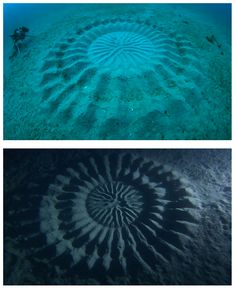 Mysterious Underwater 'Crop Circles' Discovered Off the Coast of Japan