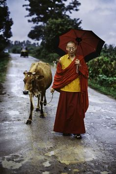 Tibetan Buddhist Monk in India by Steve McCurry