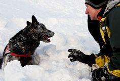 Na hory zavítala tvrdá zima, v Tatrách trvá lavínové nebezpečenstvo - Regióny - TERAZ.sk