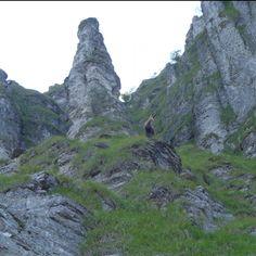 Camoscio Monte Generoso Half Dome, Lakes, Switzerland, Mountains, Nature, Pictures, Travel, Beautiful, Photos