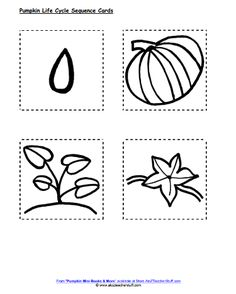 Pumpkin Life Cycle Sequencing Activity – Printable and Lesson Plan All About Me Preschool, Fall Preschool, Preschool Curriculum, Preschool Themes, Kindergarten, Preschool Activities, Preschool Halloween, Pre K Activities, Autumn Activities