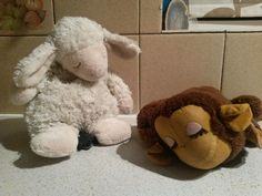 Found on 13/01/2015 @ Huntingdon . Today I found a very old looking Monkey Teddy in the road along with a sheep teddy. The monkey doesn't look like one that could be replaced as it looks like it my have been passed down through the ... Visit: https://whiteboomerang.com/lostteddy/msg/7bfshx (Posted by Tara Leanne Barber on 14/01/2015)