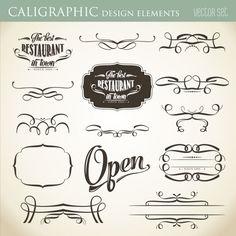Elementos caligráficos do projeto para embelezar o seu formato do vetor de layout Vetor grátis
