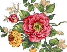 Birth Flowers, All Flowers, Botanical Flowers, Botanical Prints, Flower Frame, Flower Art, Galaxy S8 Wallpaper, India Art, Painting Leather
