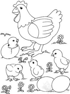 Chicken Coloring Page 0001