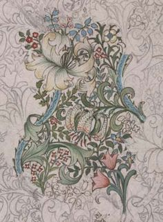 William Morris lily drawing