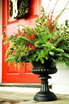 "Decorating Front Porch Urns For Christmas Prepossessing Winter Urns  Holly Boxwood Cedar & Blue Spruce 12"" Grapevine Design Decoration"