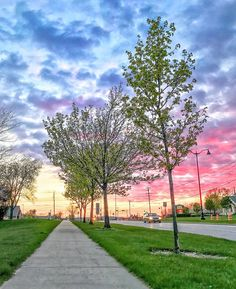 Clouds over our lovely tree-lined village are glowing in pink blue and gold __ Today's walk: 3.51 mi.; total since 3/30/14: 5164.82 miles.  #sunset #goldenhour #spring #instagood #pinksunset #sidewalks #goldensunset #love #photooftheday #beautiful #followme #walking #suburbanexpedition #sunrise_sunsets_aroundworld #glowing #relax #landscapelovers #trees #nature #walk10000miles #fitnesswalking #walks #colorfulclouds #landscapephotography #ShotOniPhone7Plus #pinksky #villagelife…